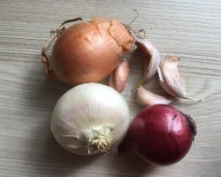 The Various Types of Onions