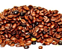 Coffee history and how coffee shaped the world. Part II
