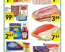 Food Basics Flyer April 8 - April 14, 2021